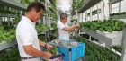 ForPressRelease.com - The Vertical Farming Market is expected to cross USD 6 Billion by 2022